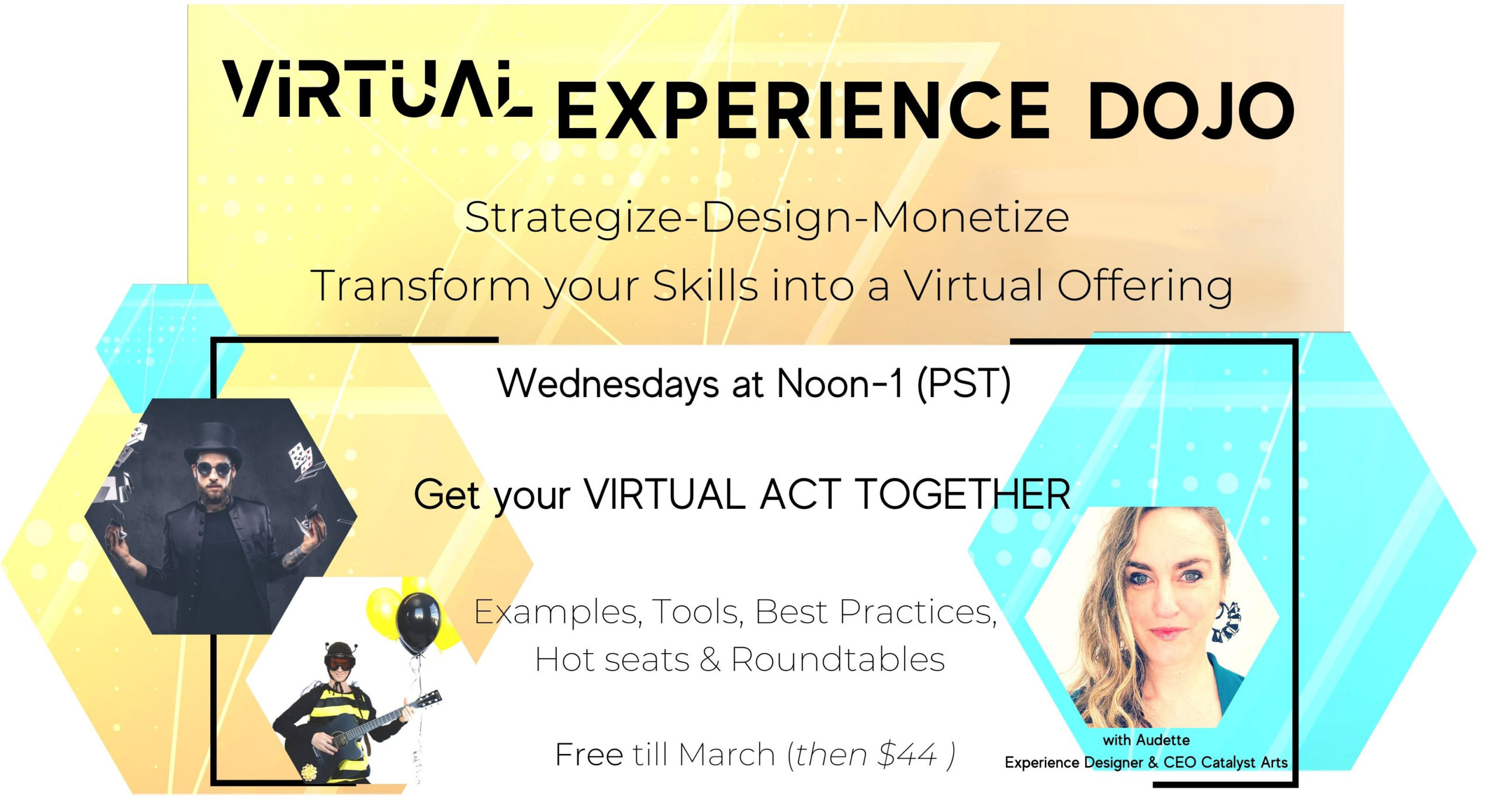 Virtual Experience Dojo with Audette for virtual talent development